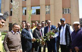 تحت شعار كلنا من أجل مصر تمت زراعة 200 شجرة مثمرة فى مبادرة يلا نجملها